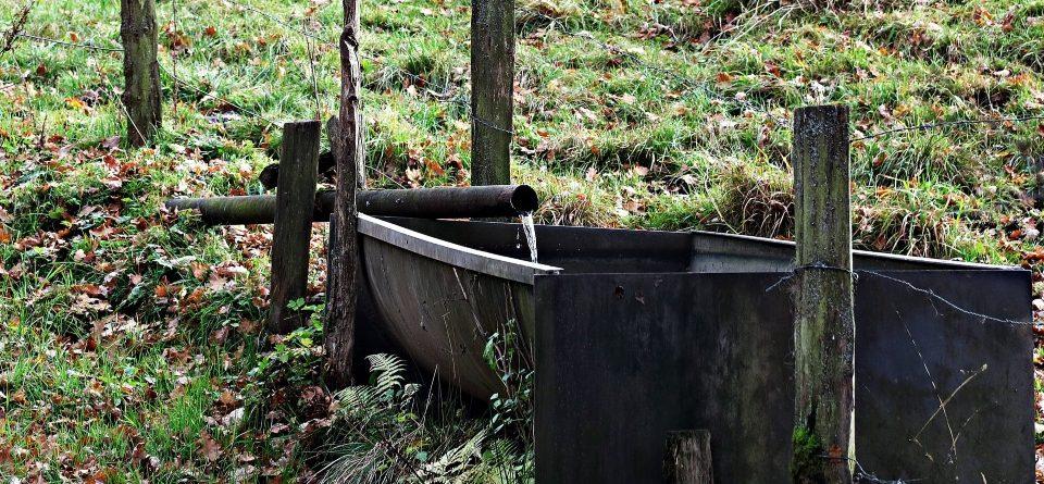 Etwas Neues genug Eine Gartenpumpe leiser machen ? - Pumpe24 Magazin #ME_85